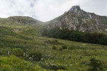 Capo Tenna