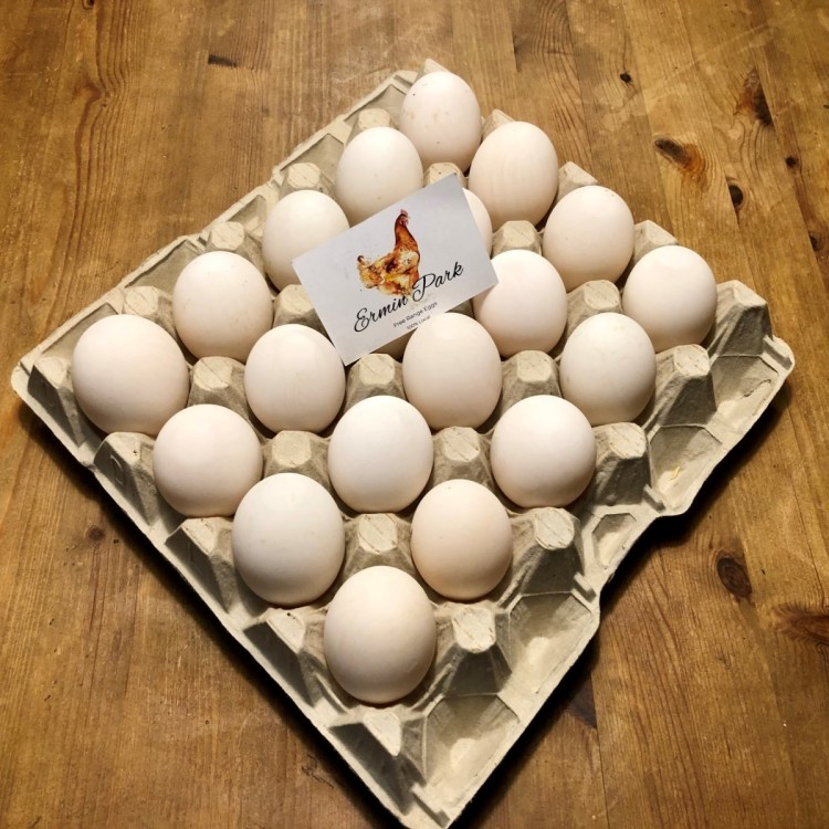Tray of 20 Duck Eggs