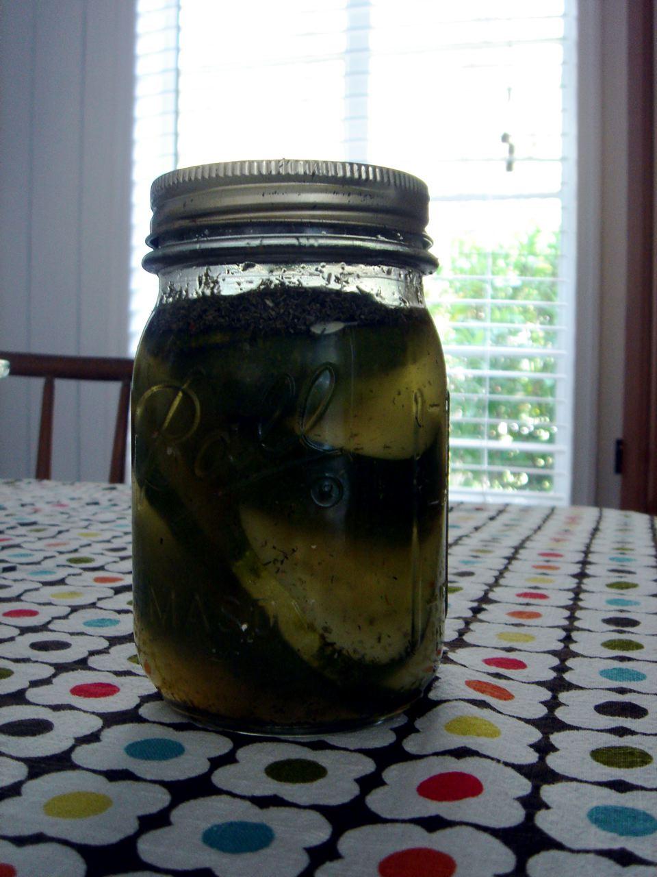 my refrigerator pickles