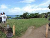 After Kahuku end vegetation