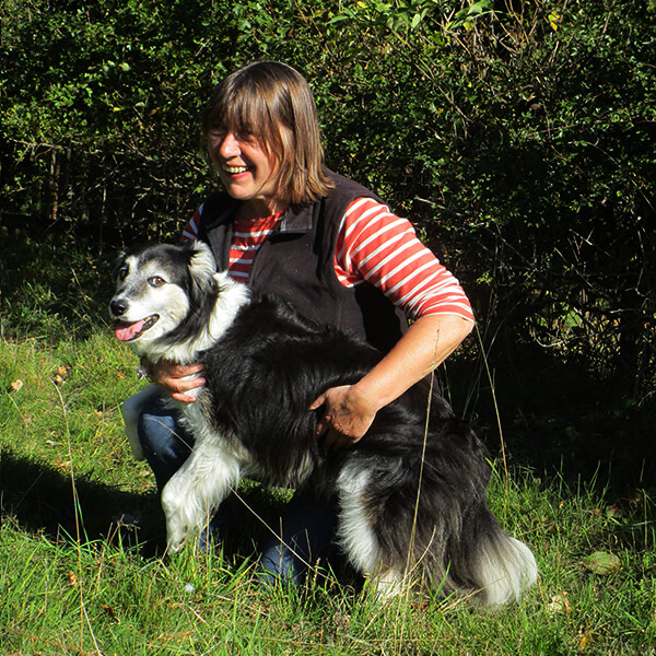 Driving with Dogs founder Lezli with her Collie, Jem