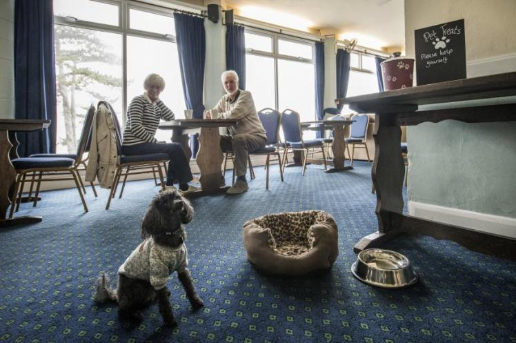 Dog with elderly couple in bar at Combe Martin Beach Holiday Park