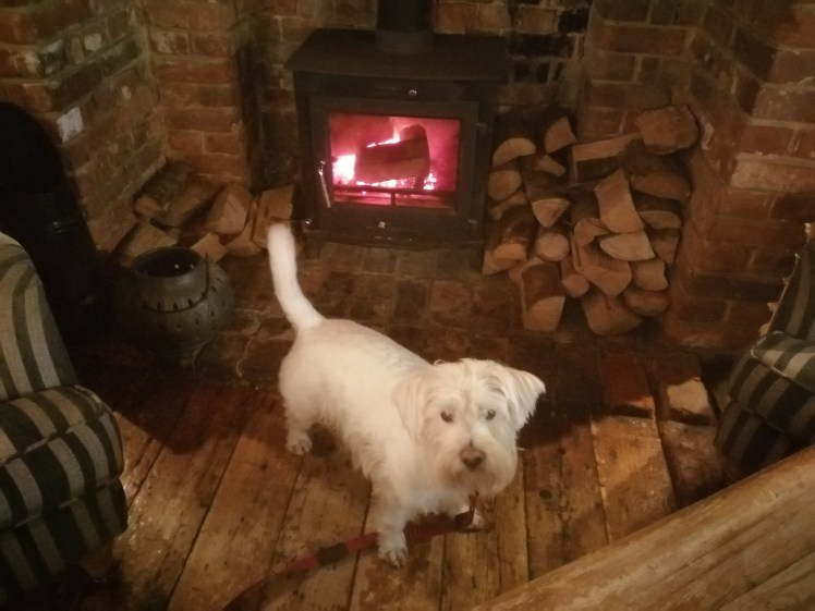 Ernie by the wood burner at The Blazing Donkey