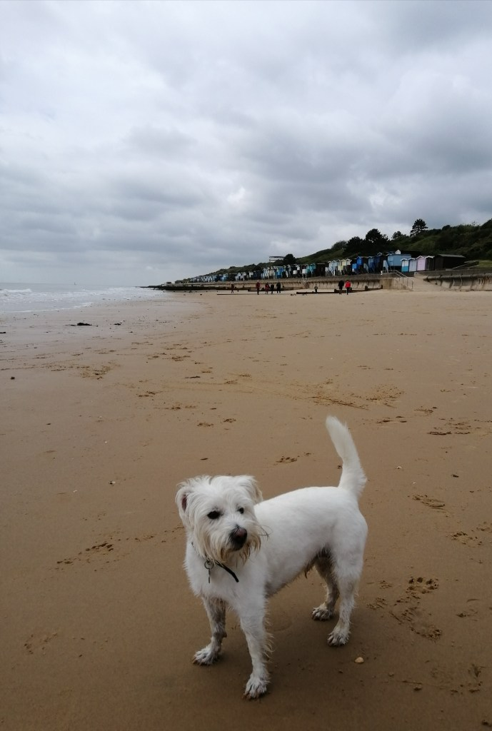 Ernie on the beach at Walton-on-the-Naze