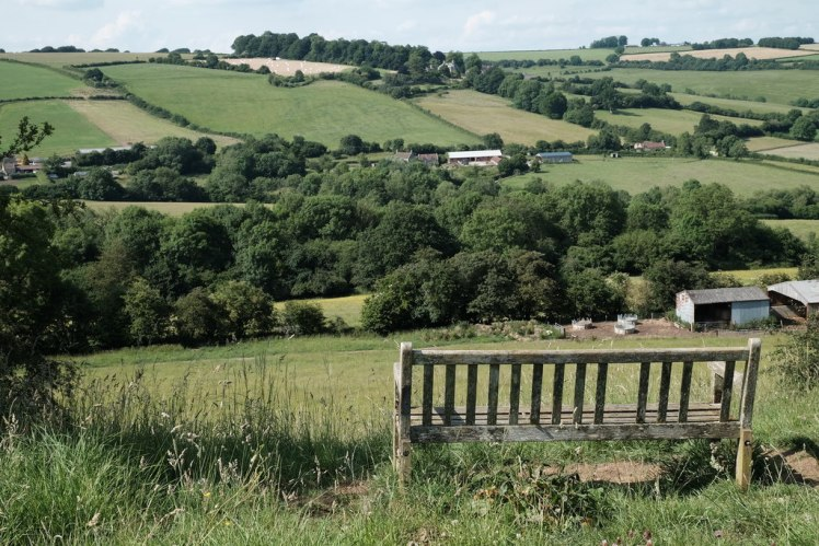 A bench on the Cotswolds Way