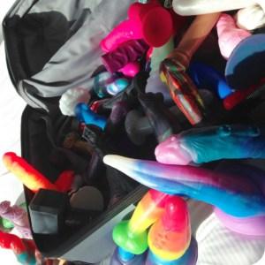 Lunabelle's amazing dildo suitcase