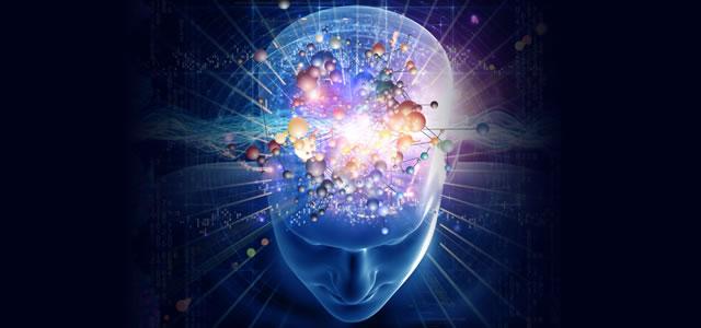 Медитация и физическая трансформация мозга