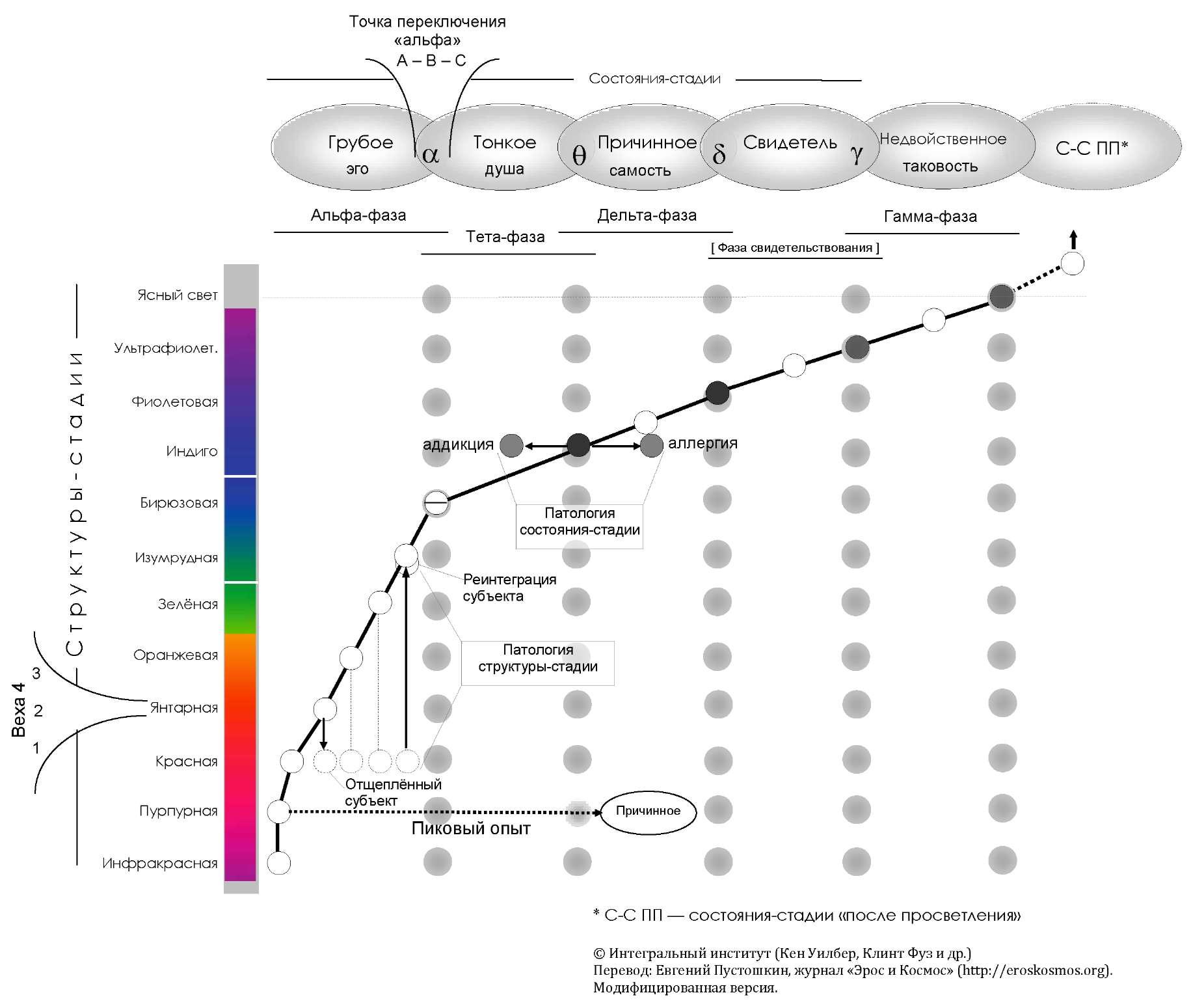 Вертикальное (структуры-стадии) и горизонтальное развитие (состояния-стадии) в интегральном подходе