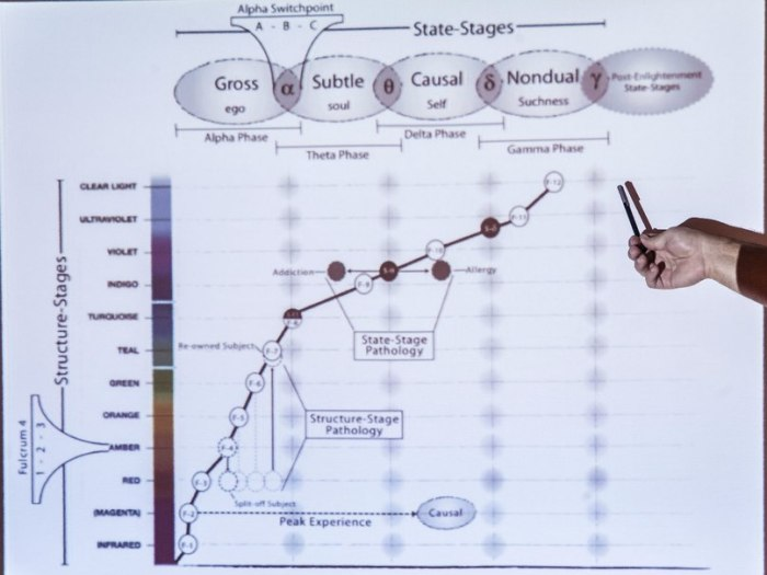 Клинт Фуз объясняет траектории развития сознания на семинаре в Москве (декабрь 2012)
