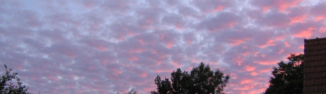 Nuages roses