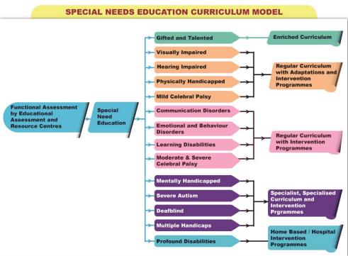 Bunifu ERP-Kenyas New Curriculum Special Needs Education