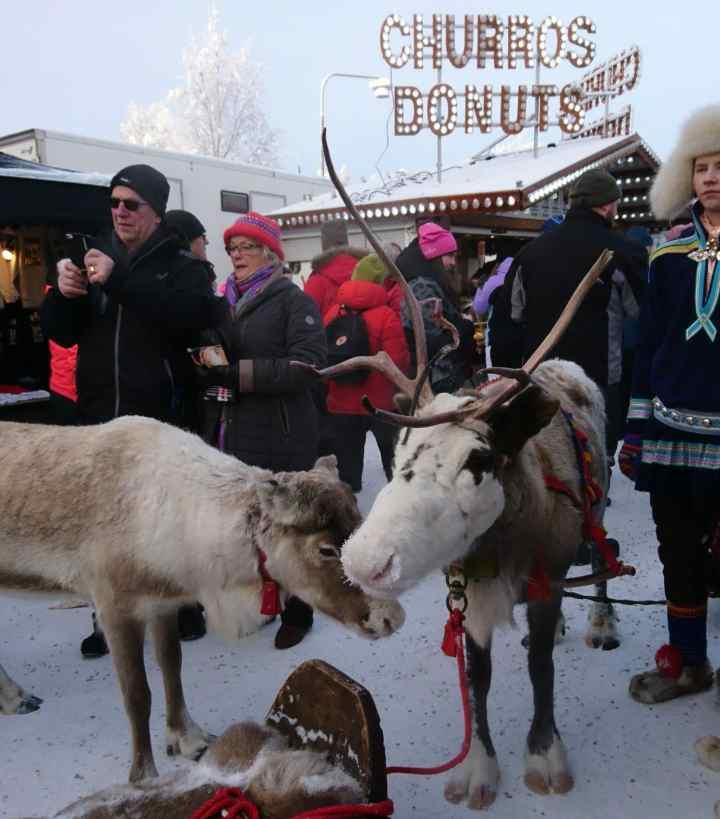 Jokkmokk (Winter market 2019)