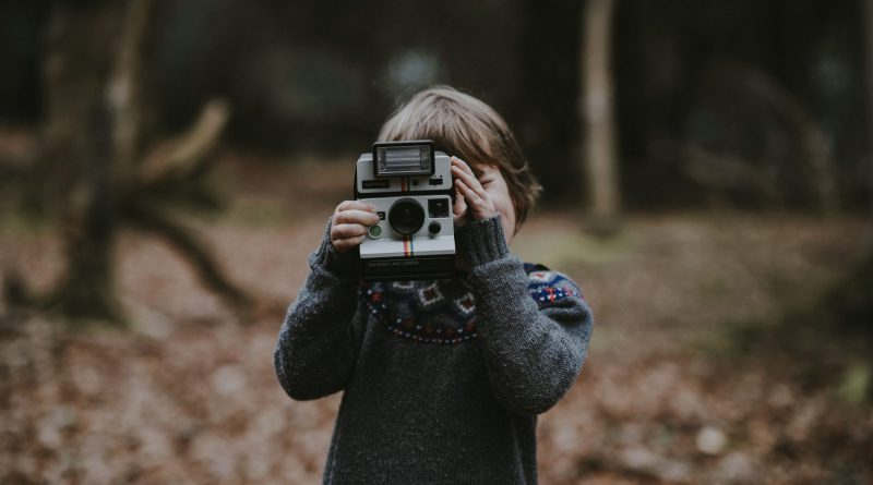 First Impressions of An Unschooling School Erraticus Image by Annie Spratt