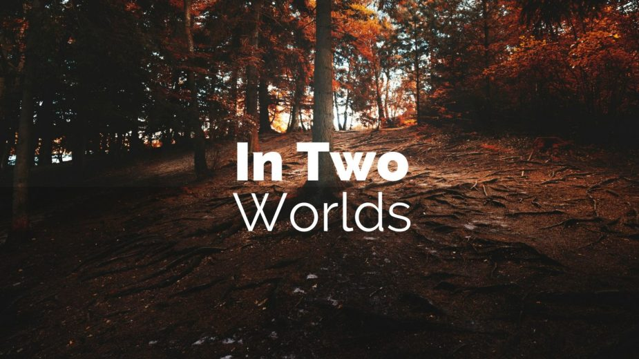 In Two Worlds Official Website Logo