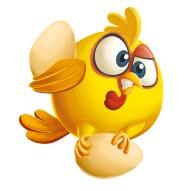 poule3