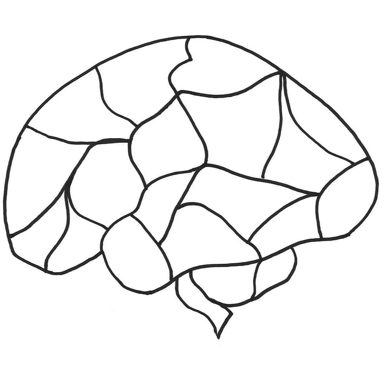 Blank Brain Template With Images