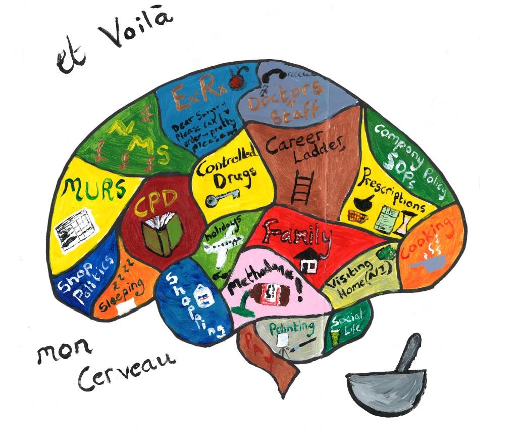 Blank Diagram Of The Brain Lobes