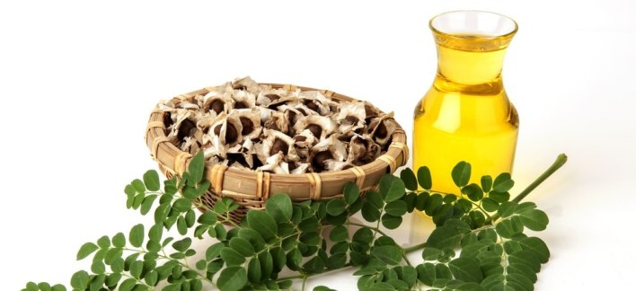 Moringa Yağı Ne işe Yarar? Moringa Yağının faydaları nelerdir?