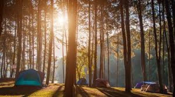 Bitlis Kamp Alanları – Bitlis'te Kamp Yapılacak Yerler