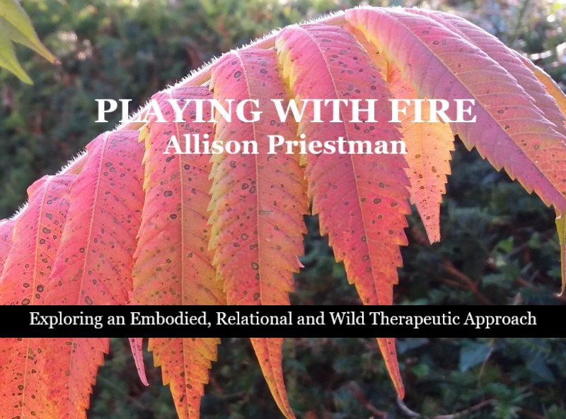 Playing with Fire, Exploring an Embodied, Relational and Wild Therapeutic Approach