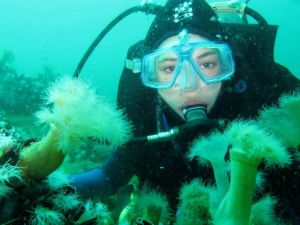 tips berwisata laut