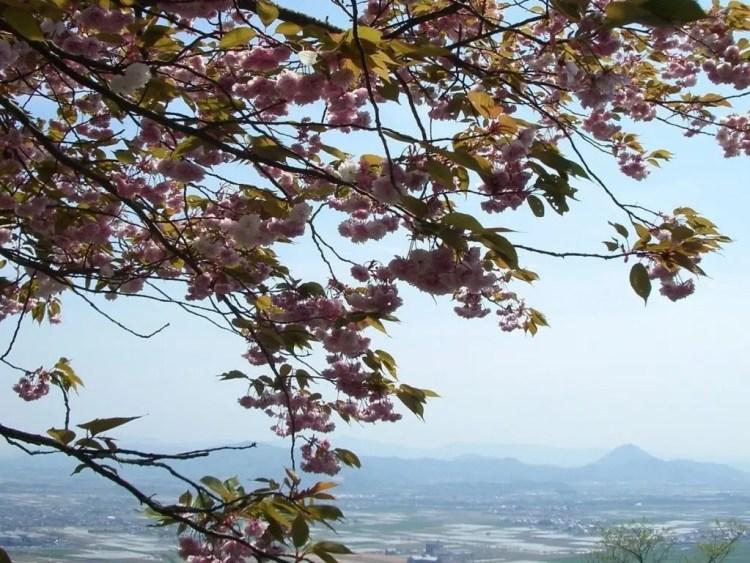 Mount Hachiman