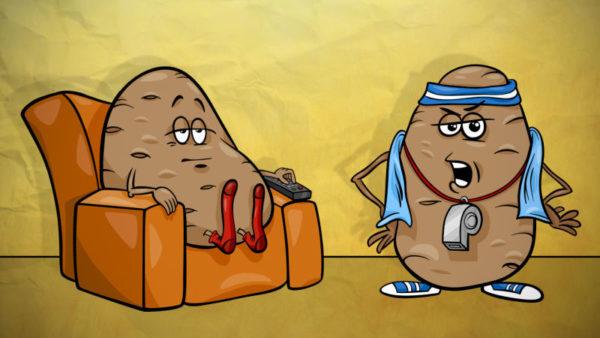 картошки1