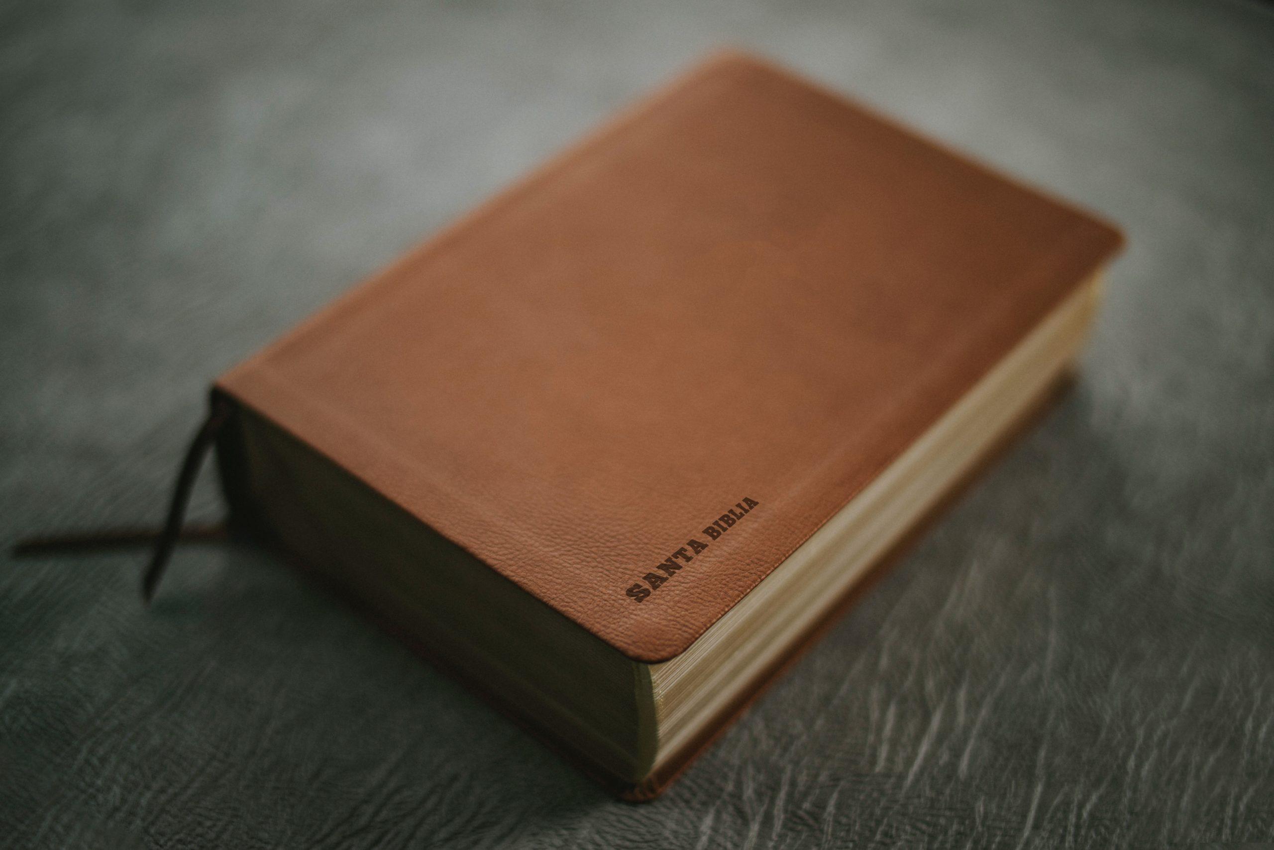 Cuatro Razones Por Las Que Debes Predicar Génesis