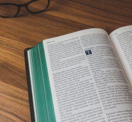 KJV Lion Bible with green under gold art-gilt.