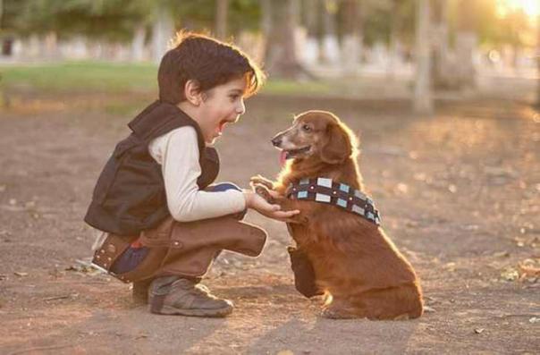 beneficios criar niños con perros