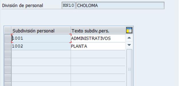 Configuración HCM SAP : Definición Subdivisión de personal