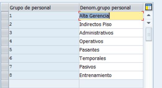 Configuración HCM SAP : Definición Grupos de Personal