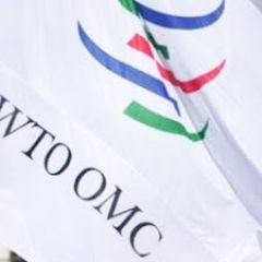 La demanda contra Argentina fue presentada ante la OMC por 43 países en 2012 y refiere a los trámites de importación