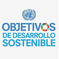 Los países miembros de la ONU apuntarán a erradicar la pobreza extrema en los próximos años. (Wikipedia)