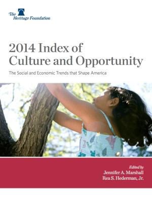 Índice de Cultura y Oportunidad 2014