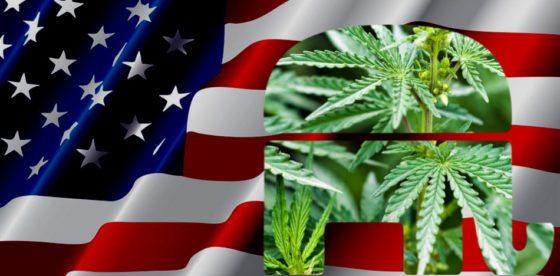Candidata republicana a gobernadora de Nebraska propone despenalizar la marihuana por completo