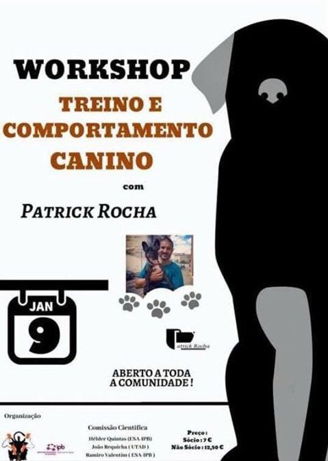 Workshop - Treino e Comportamento Canino