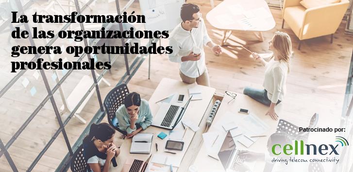 La transformación de las organizaciones genera oportunidades profesionales