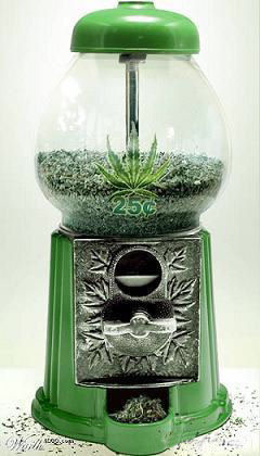 nacion-cannabis