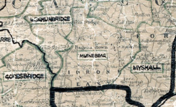 Muinbeag map portlaoise