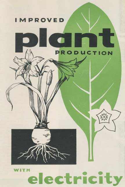 Improved plant production