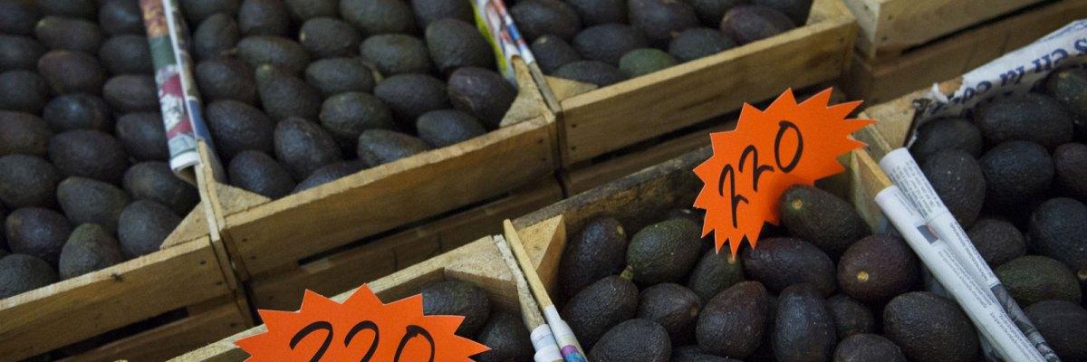 El precio del aguacate pone en peligro a los bosques