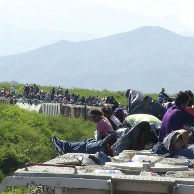Migrantes sobre el Tren La Bestia