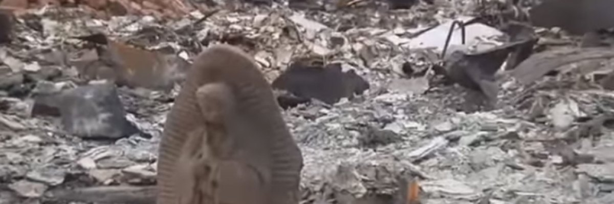 #Esperanza: Harvey destruyó el hogar de una familia mexicana, pero la Virgen de Guadalupe sobrevivió