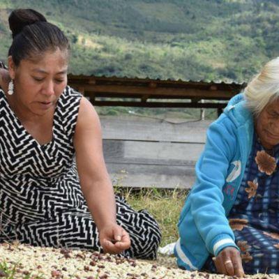 #Fregona: Mujer zapoteca gana el primer lugar en concurso de fotografía latinoamericana