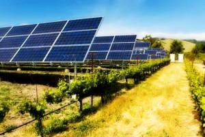 Prodhoni energji nga panelet diellore për konsum vetjak? Ja si do veproni për të shitur tepricat