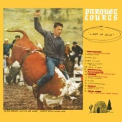Parquet Courts - Light Up Gold - Borrowed Time