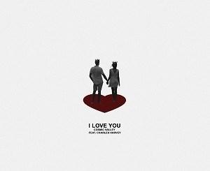 Cosmic Valley - Charles Harvey - I love You