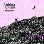 American Anymen - Flag Burner