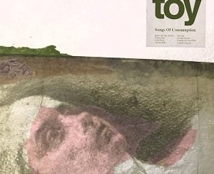 TOY - Songs of Consumption - Fun City